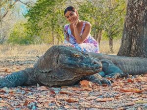 Booking Online Masuk Taman Nasional Komodo Ditolak Pelaku Pariwisata