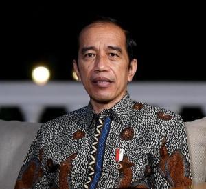 Presiden Jokowi Pastikan Tidak Ada Impor Beras Hingga Juni 2021